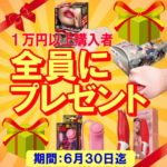 1万円以上購入者にプレゼント